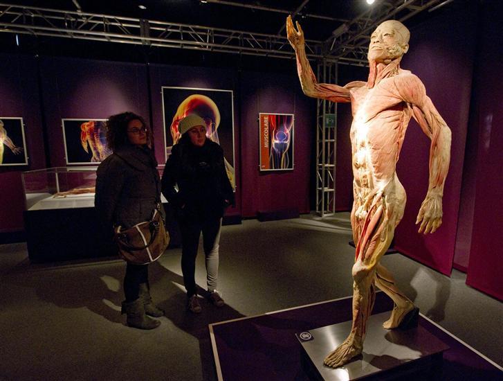HUMAN body esposizione Torino