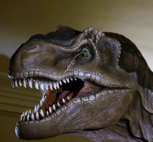 Torino dinosauri settembre 2013