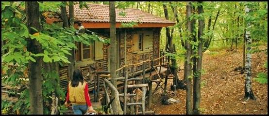 I Tarzan del nuovo millennio vivono in Piemonte