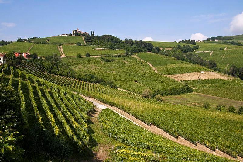 'Vacanze torinesi'. Seconda puntata: Langhe e Monferrato.