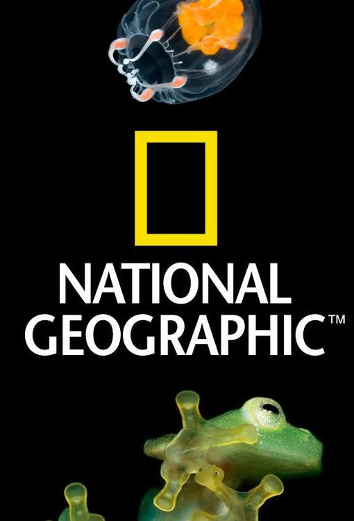 National Geografic sbarca alla Fondazione Torino Musei