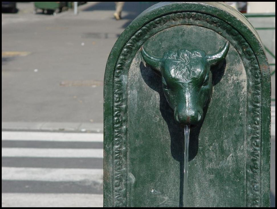 Torino e Lyon, due nomi e due fontane