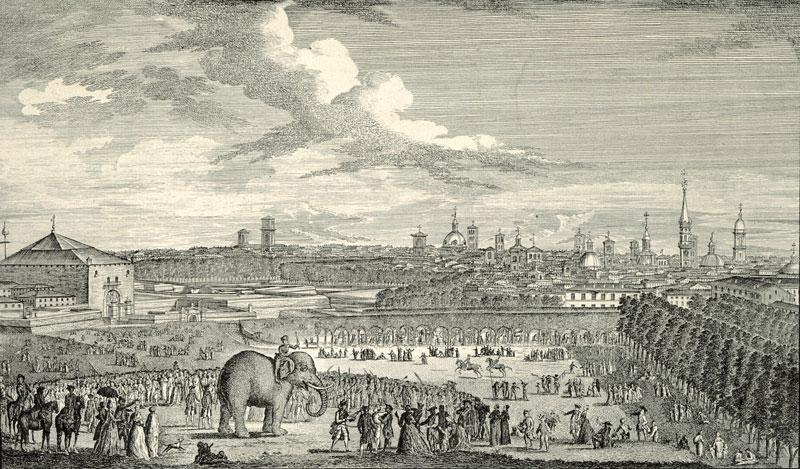 La tragica storia di Fritz, l'elefante triste di Stupinigi Torino