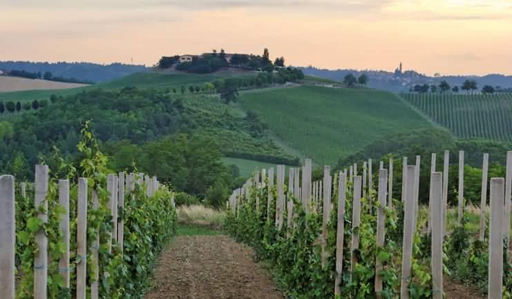 Il Piemonte è internazionale. Lo dicono i numeri.