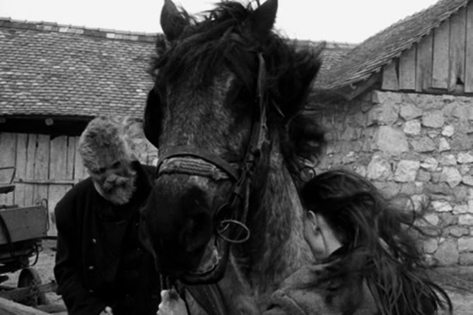 """La pazzia di Nietzsche nel film """"il cavallo di Torino"""""""