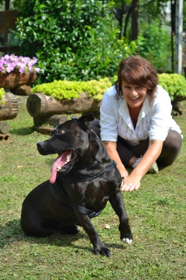 Un lavoro originale per reinventarsi il futuro: il wedding dog sitter a Torino
