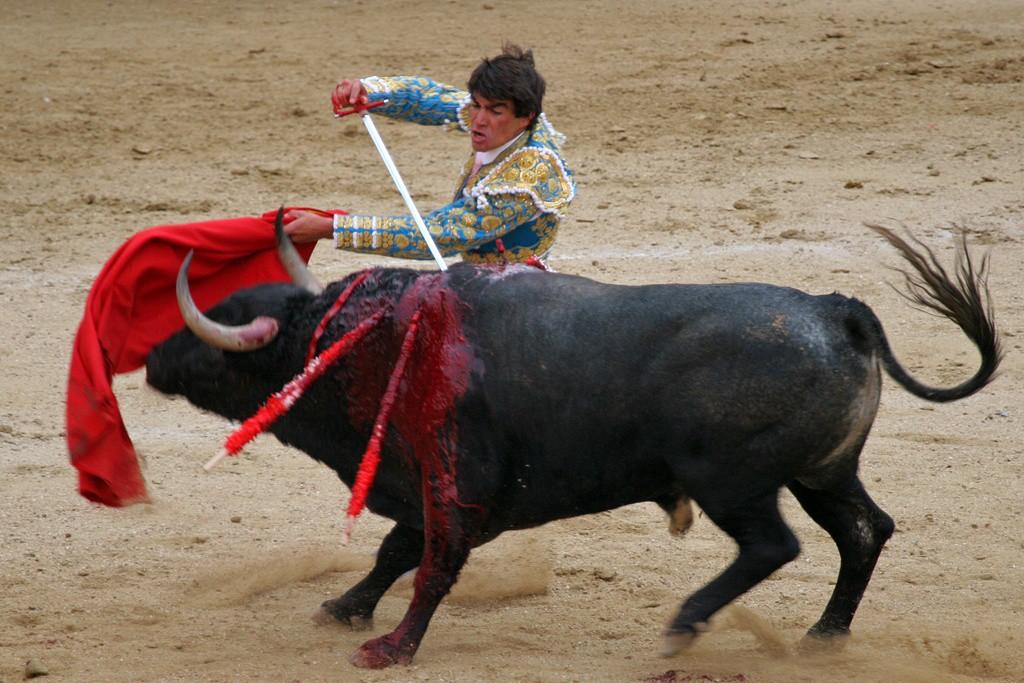 Odierna corrida