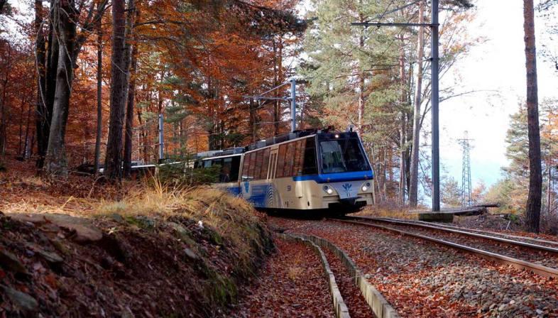 treno-del-foliage