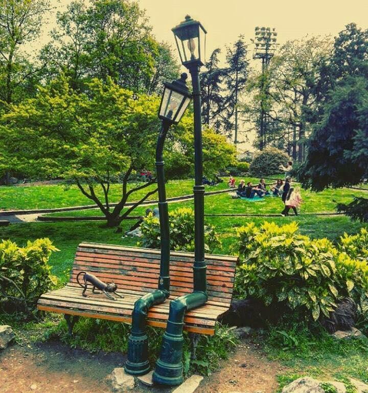 Secondo Treepedia Torino è una delle città più verdi del mondo