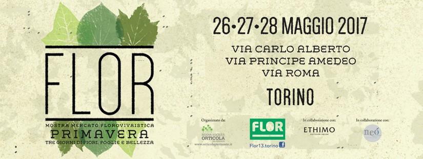 Cosa fare a Torino nel weekend 26-28 maggio?