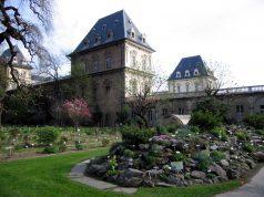 Orto Botanico di Torino, un'oasi vegetale nel cuore della città