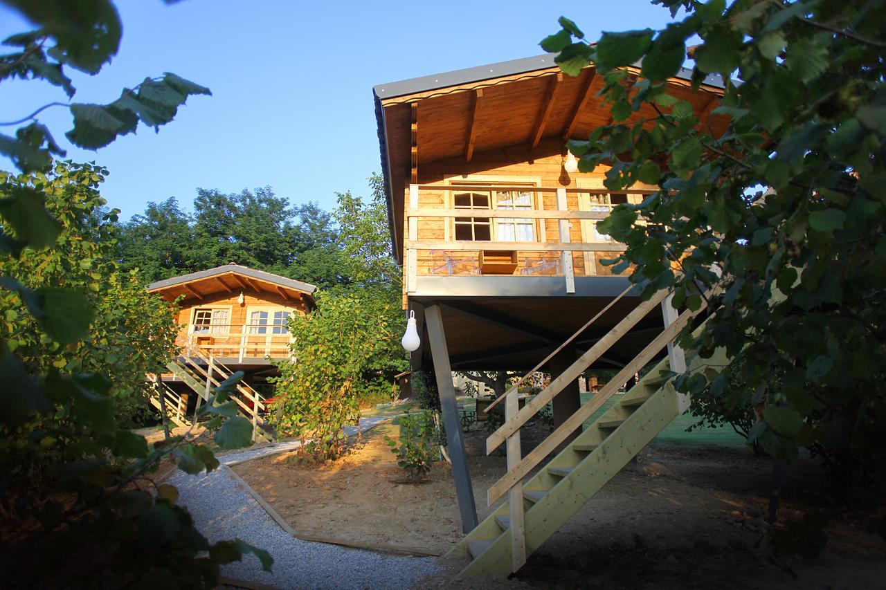 Case Piccole Da Sogno : Gli hotel sugli alberi in piemonte quattro location da sogno per