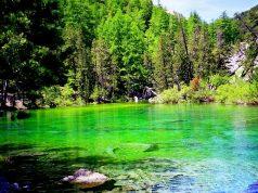Alla scoperta del Lago Verde, gioiello incastonato nelle montagne torinesi!