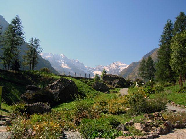 Parco Nazionale del Gran Paradiso: il parco nazionale più antico d'Italia