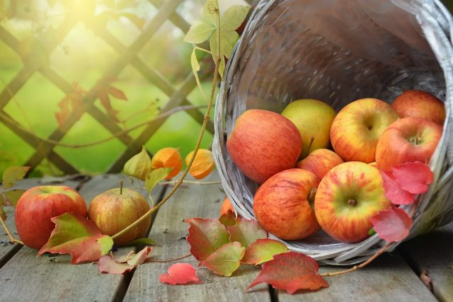 Sagre di novembre 2018 in Piemonte: week-end all'insegna del buongusto!