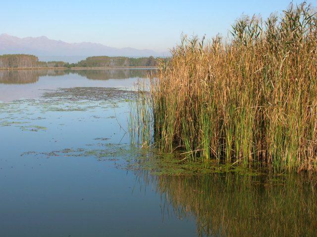 Lago di Candia, alla scoperta delle origini preistoriche